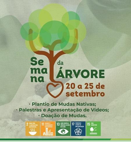 Secretaria de Meio Ambiente promove Semana da Árvore em Serra Talhada –  Blog do Silva Lima